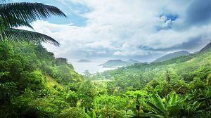 Seychelles, naturaleza y quietud