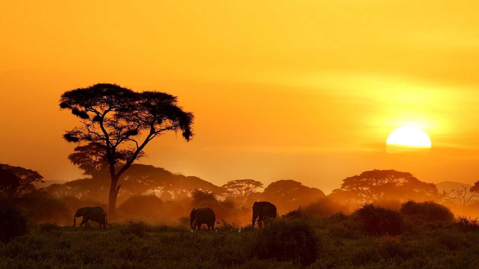 Paraísos cercanos - Kenia, la cima africana - RTVE.es