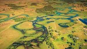 Brasil. Una historia natural: Un bosque frágil