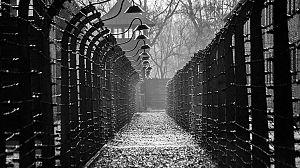 En la máquina de matar de Hitler: Los campos del horror nazi