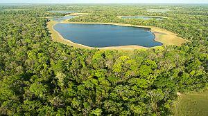 Brasil. Una historia natural: Laberinto de lagos