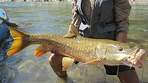 Pesca Imposible 2 - Nepal