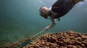 Pesca Imposible 2 - Mozambique
