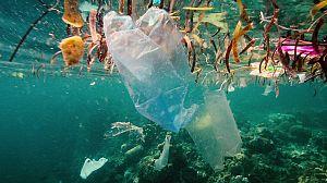 Plástico por todas partes