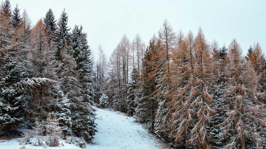 Domingo con lluvias fuertes en el Cantábrico y nieve en montañas del norte