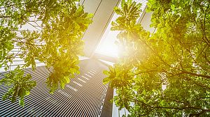 Construcciones ecológicas: Eco-constructoras