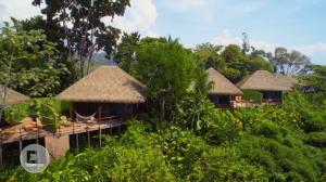 Construcciones ecológicas: En el corazón de la selva