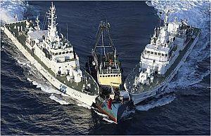 A la conquista del mar - Avance