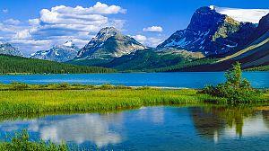 El año de la naturaleza canadiense: verano