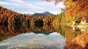 El año de la naturaleza canadiense: otoño