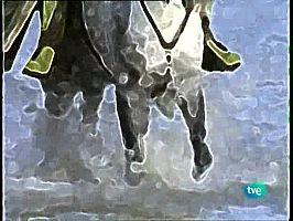 Castas del Llano y la marisma