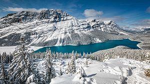El año de la naturaleza canadiense: invierno