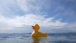La gran amenaza de los océanos - Avance