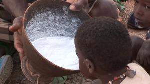 Los últimos africanos: Expedición África