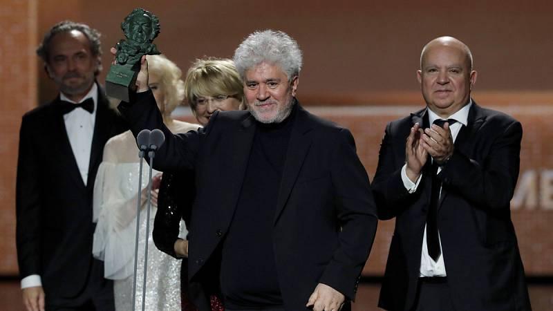 Dolor y gloria, el largometraje número 21º de Pedro Almodóvar, se ha alzado con el Goya a la mejor película en la 34ª edición de estos premios de la Academia de Cine.Almodóvar se lleva así el premio principal frente a Alejandro Amenábar, el otro gran