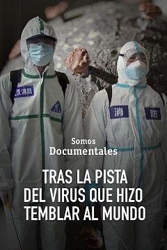Tras la pista del virus que hizo temblar al mundo