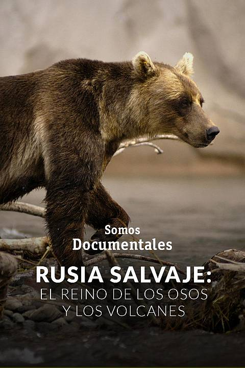 Rusia salvaje: el reino de los osos y los volcanes