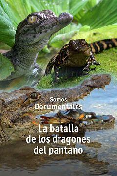 La batalla de los dragones