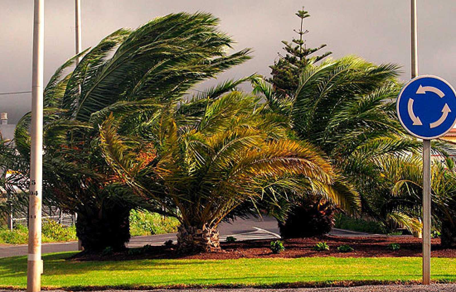 Resultado de imagen de temporales canarias