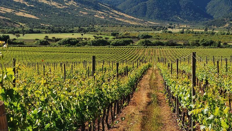 España vuelta y vuelta - Recorremos las rutas del vino de España - Escuchar ahora