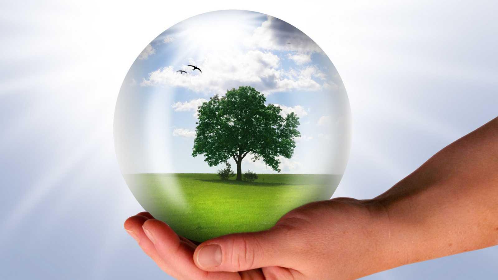 Sector.3 - Conservación medioambiental, un pilar de la RSE - 10/11/15 - escuchar ahora