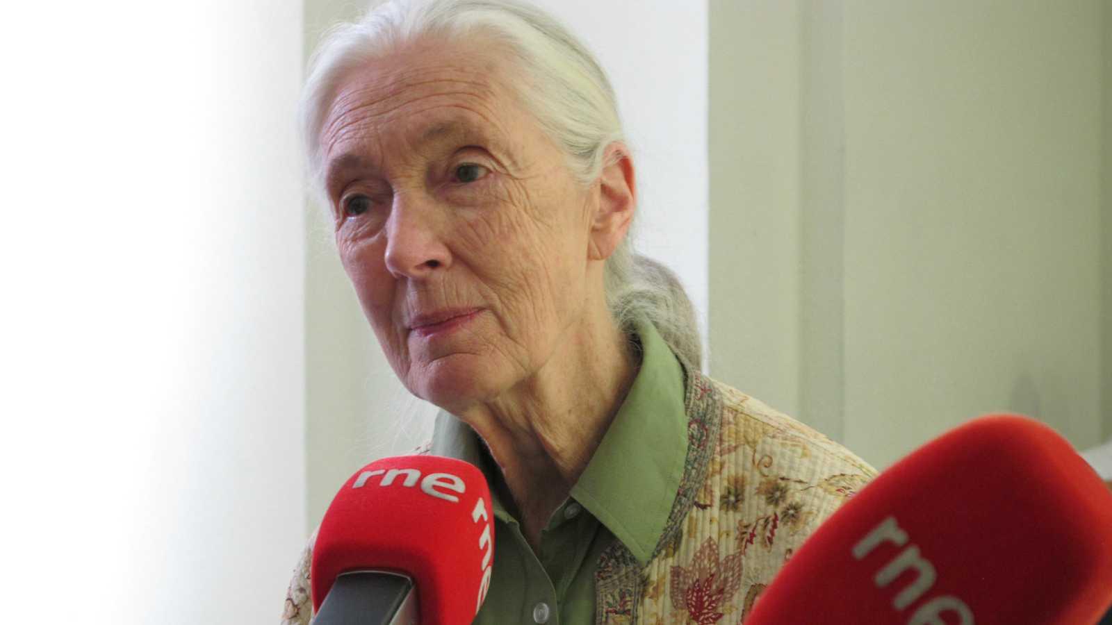 No es un día cualquiera - Jane Goodall - Escuchar ahora