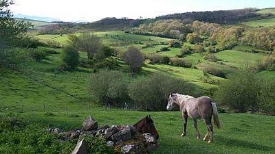 Reportajes en R5 - Estepas de la Mancha, 25º aniversario de Red Natura - 06/06/17 - Escuchar ahora
