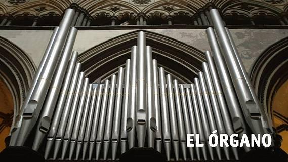 El órgano