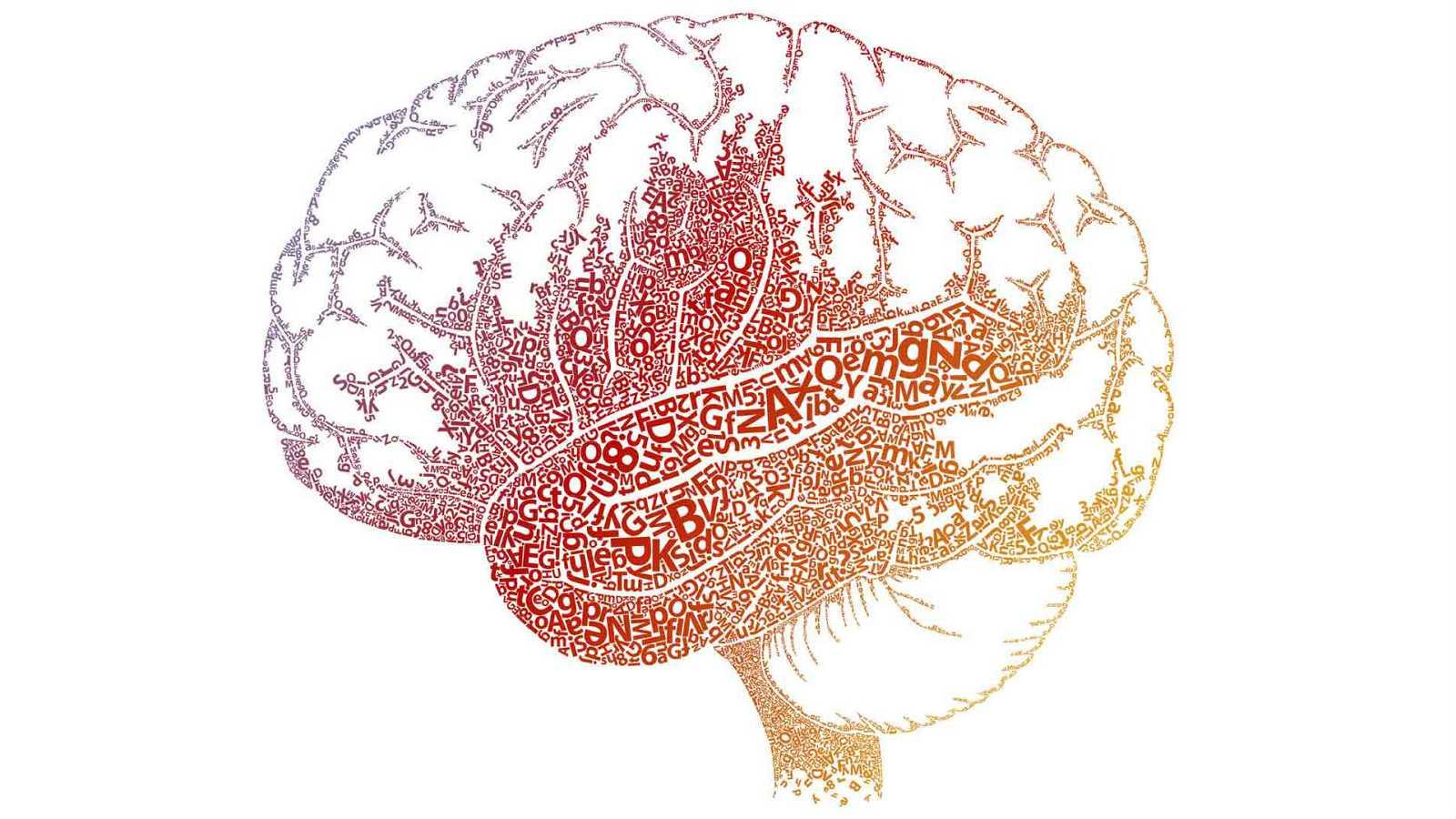 Complementarios - El cerebro emocional y el arte de educar con amor - 17/09/17 - Escuchar ahora