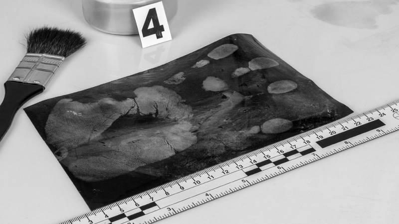 """De lo más natural - Ciencia forense: """"Los muertos hablan más que los vivos"""" - 27/05/18 - escuchar ahora"""