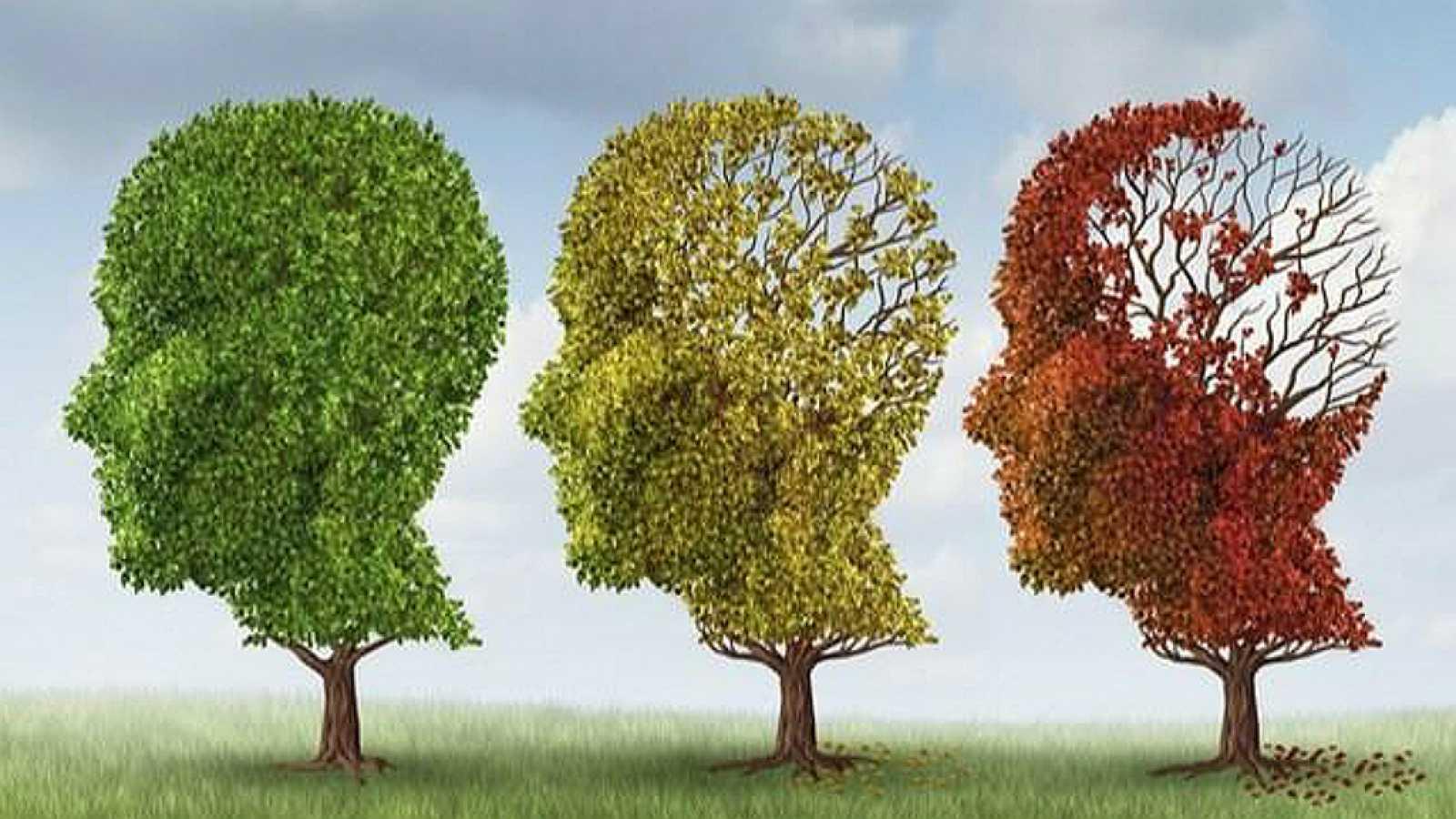 España vuelta y vuelta - La posibilidad de desarrollar alzhéimer en personas con trastornos de memoria - 28/05/18 - Escuchar ahora