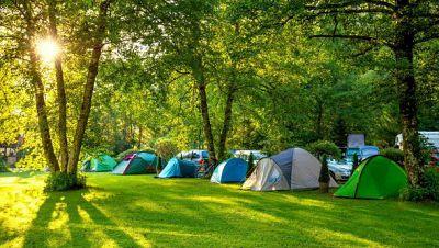 Memoria de delfín - Camping: aventura y convivencia en un mismo plan - 09/07/18 - escuchar ahora