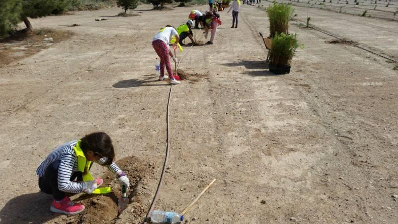 Respetar el medio ambiente desde niños - Escuchar ahora