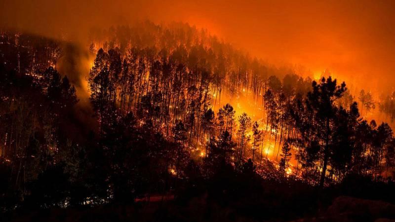"""La amenaza de los """"superincendios"""" - Escuchar ahora"""