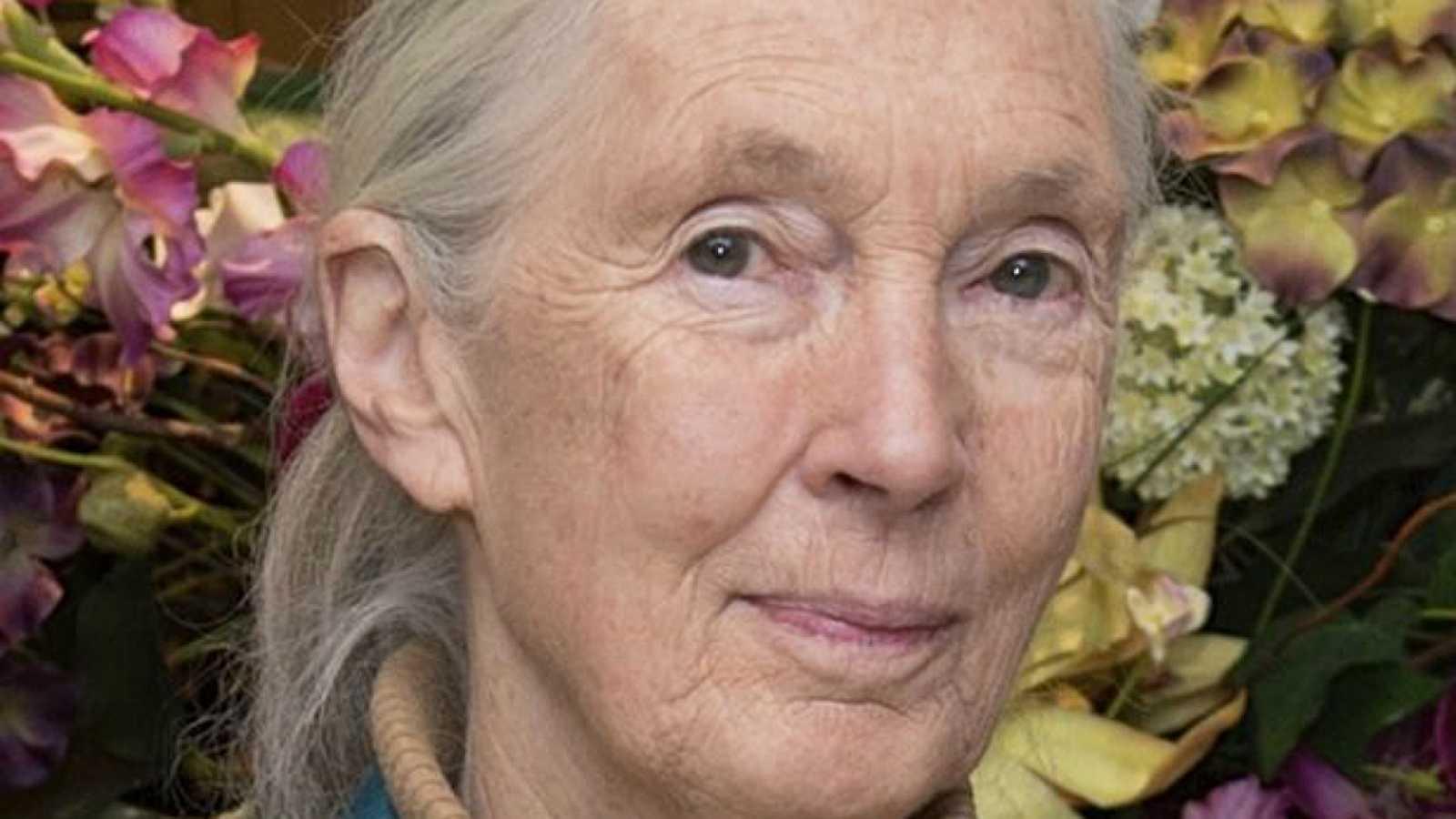 Canal Europa - Europeos que dejan huella (I): Jane Goodall - 09/10/18 - Escuchar ahora