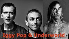 Próx,parada - Iggy Pop, invoca a la nostalgia