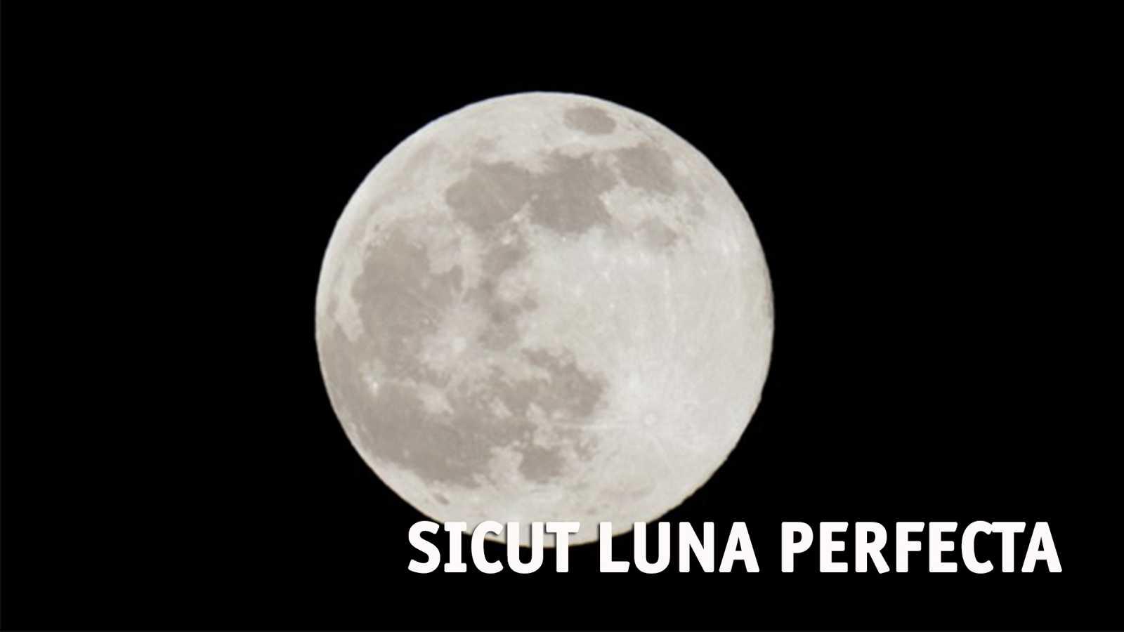 Sicut luna perfecta - Dom Laurentino Sáenz de Buruaga (+25.12.2018) - 29/12/18 - escuchar ahora