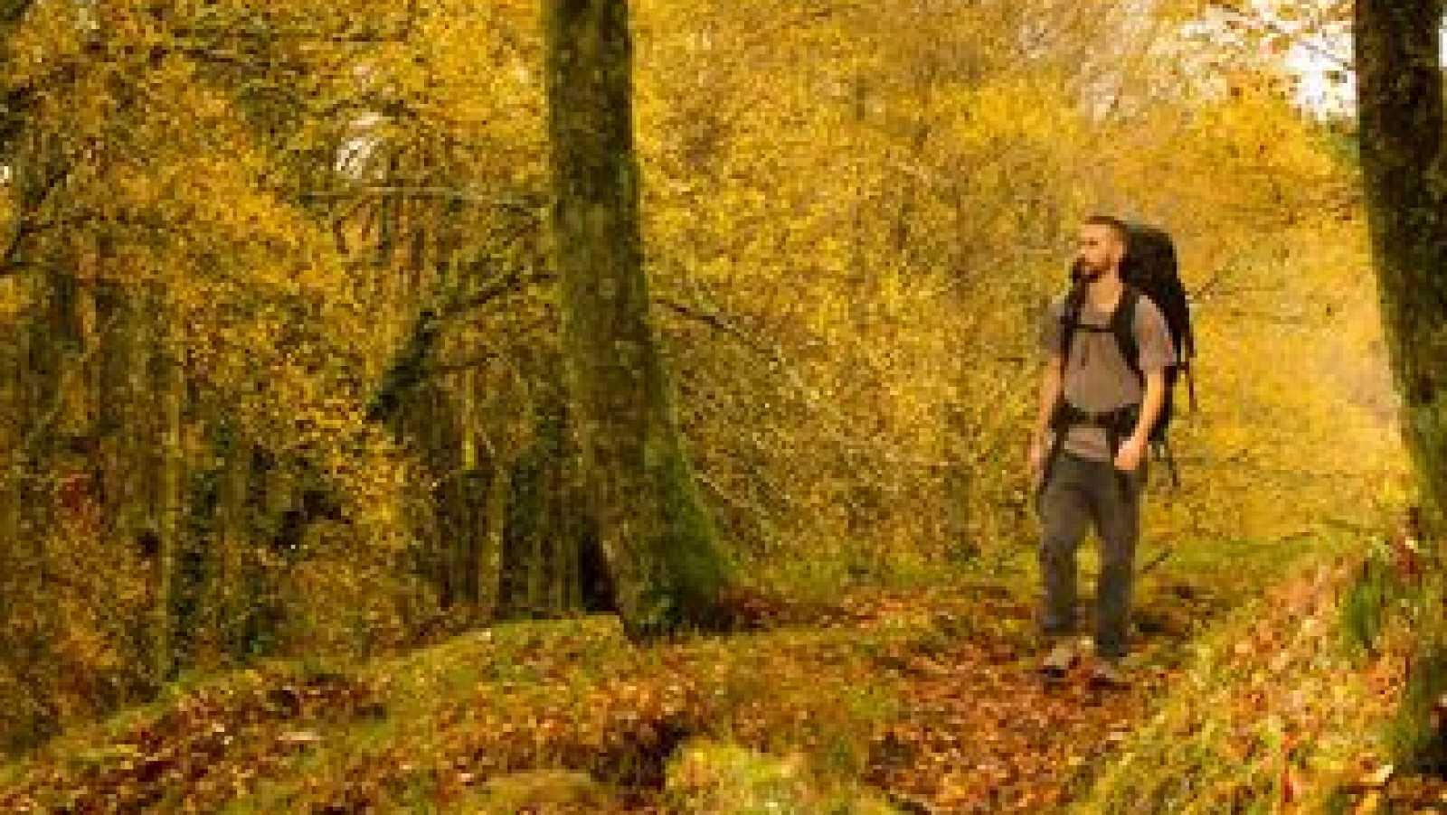 Vida verde - Brais Palmás - 09/02/19 - escuchar ahora