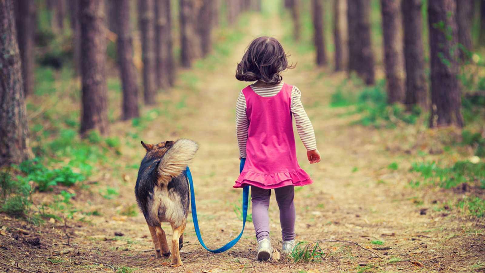Complementarios - Terapia con animales - 10/02/19 - Escuchar ahora