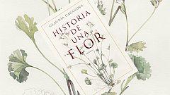 Vida verde -  Blanca Catalán de Ocón, la primera botánica española - 16/02/19