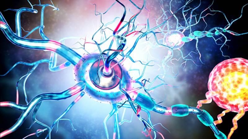 A su salud - Investigación sobre la esclerosis múltiple - 15/02/19 - Escuchar ahora