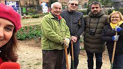 Vida verda - Horts Can Batlló + Josep Ferrer i Guardia + Alzina Encarnació + Interior d¿Illa