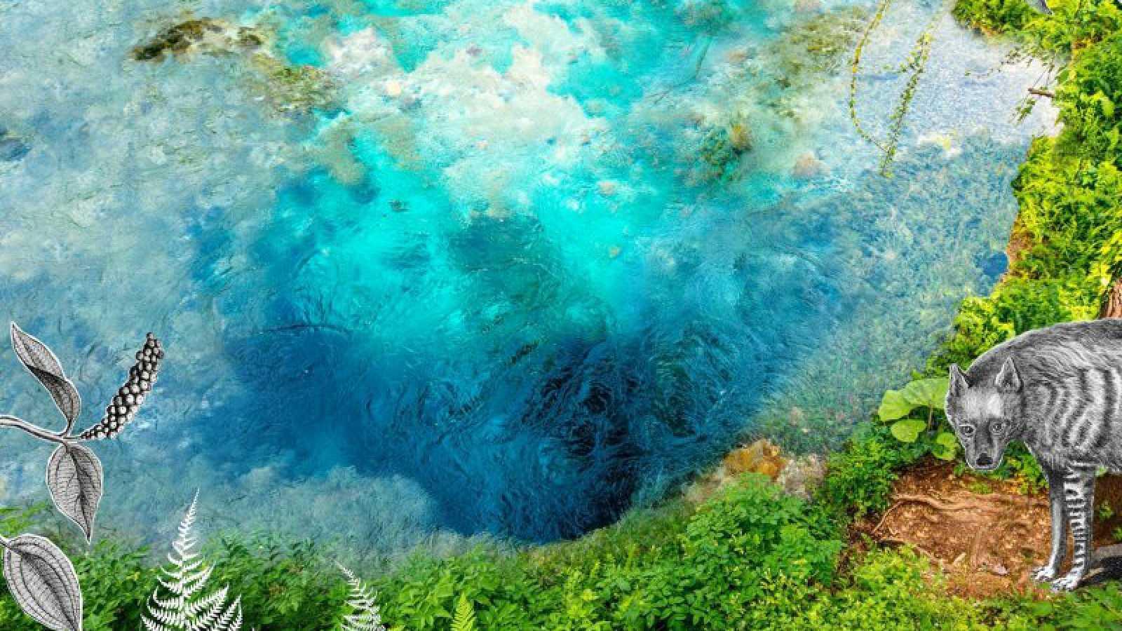Vida verde - 'Claves EcoFeminsitas', libro divulgativo de Alicia H. Puleo - 27/04/19 - escuchar ahora