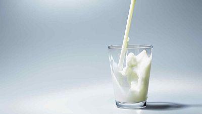 Memoria de delfín - La leche: Alimento e industria - 01/06/19 - escuchar ahora
