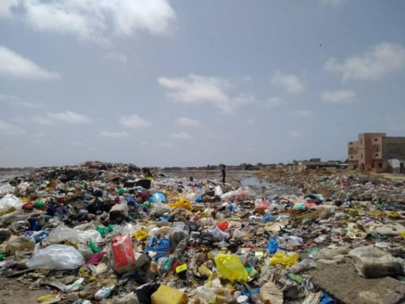 Equilibristas - La mujer barbuda - Senegal en plástico - 09/06/19