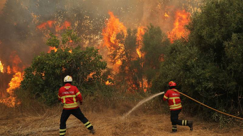Boletines RNE - WWF advierte sobre el aumento y peligrosidad de los incendios forestales - Escuchar ahora