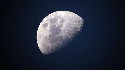 Memoria de delfín - 50 años del Apolo XI: primera huella en la luna - 06/07/19 - escuchar ahora