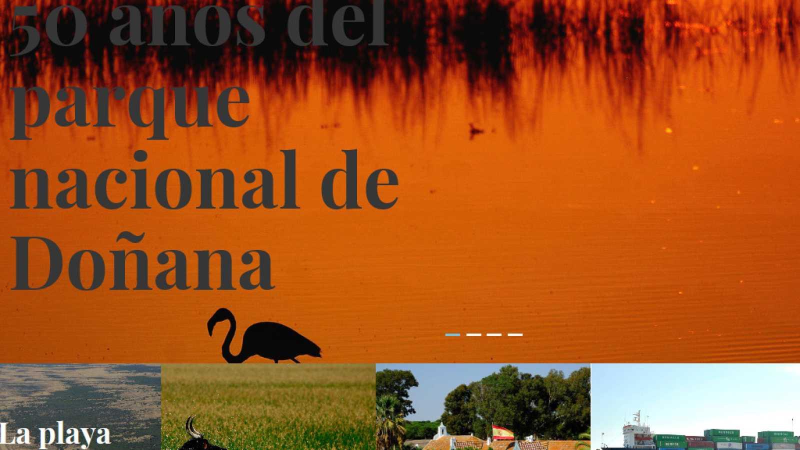 Reserva natural - 50 años de Doñana y la Amazonía de Bolsonaro - 31/07/19- escuchar ahora