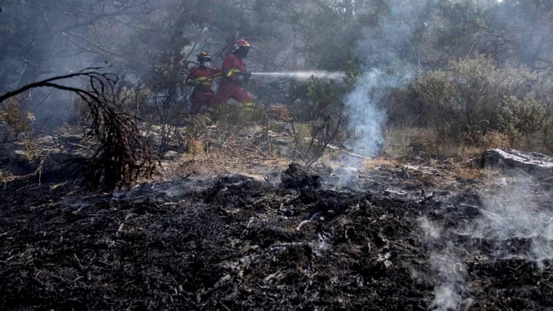 Todo Noticias - Mañana - ¿Qué hacemos con el terreno después de un incendio? - Escuchar ahora