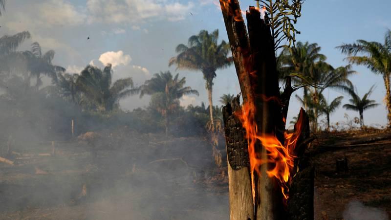 14 horas - Arde el Amazonas, principal recurso contra el cambio climático - Escuchar ahora